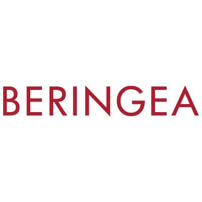 BeringeaPrivateEquity